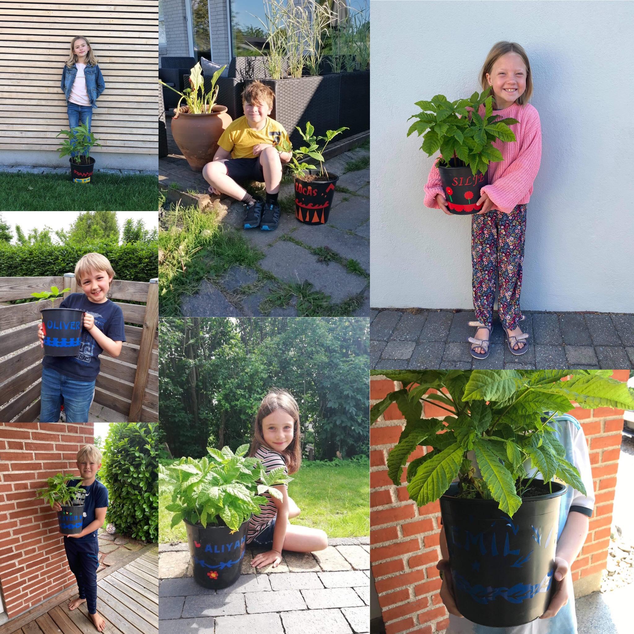 Collage af fotos af elever med deres mange forskellige designs af plastik spande. Spandene er pyntet med udskæringer af vinyl