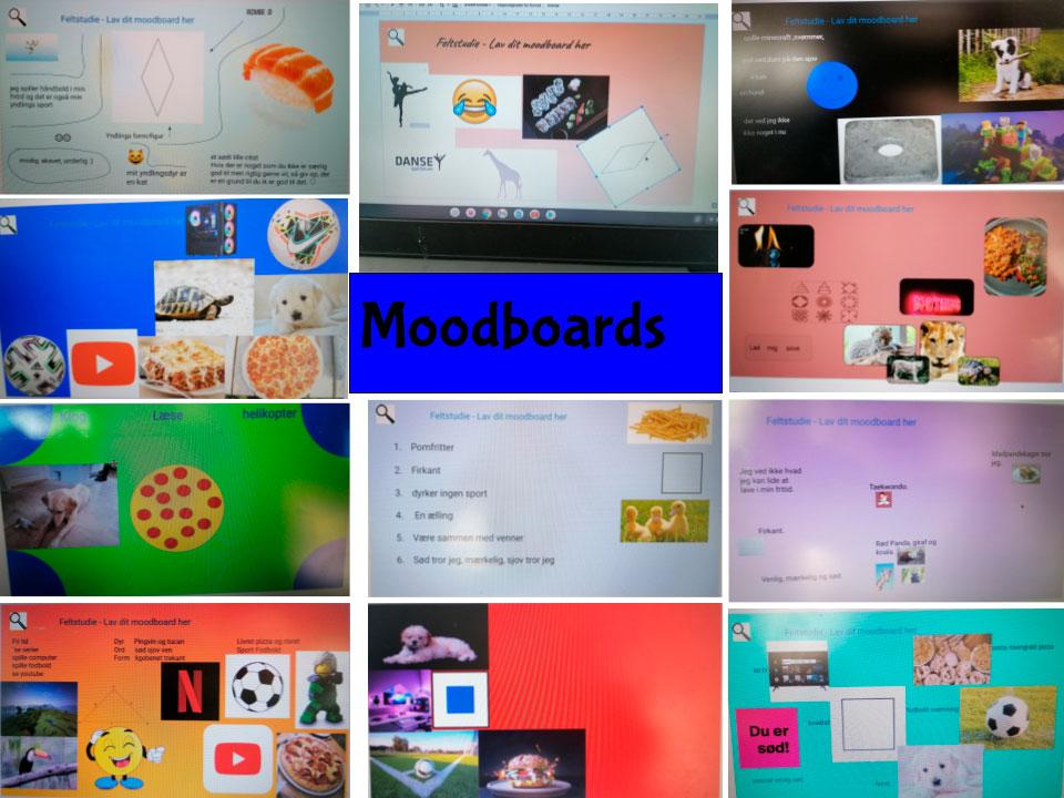 Collage med billeder af de forskellige feltstudier