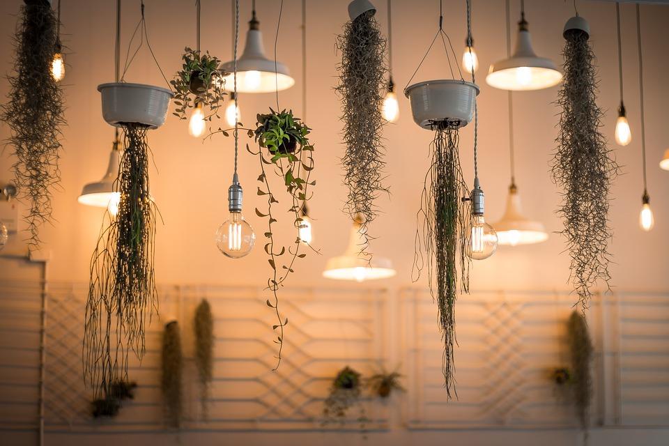 Lamper og blomster der hænger ned fra loftet i et rum