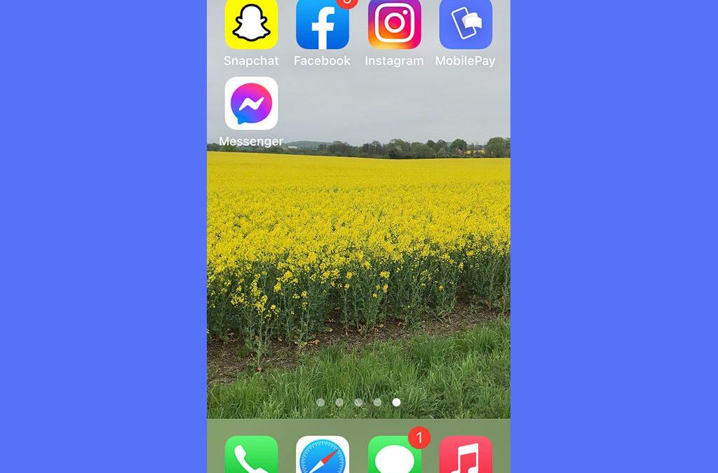 Screendump af iphonetelefon. Kornmarker og ikoner til sociale medier.